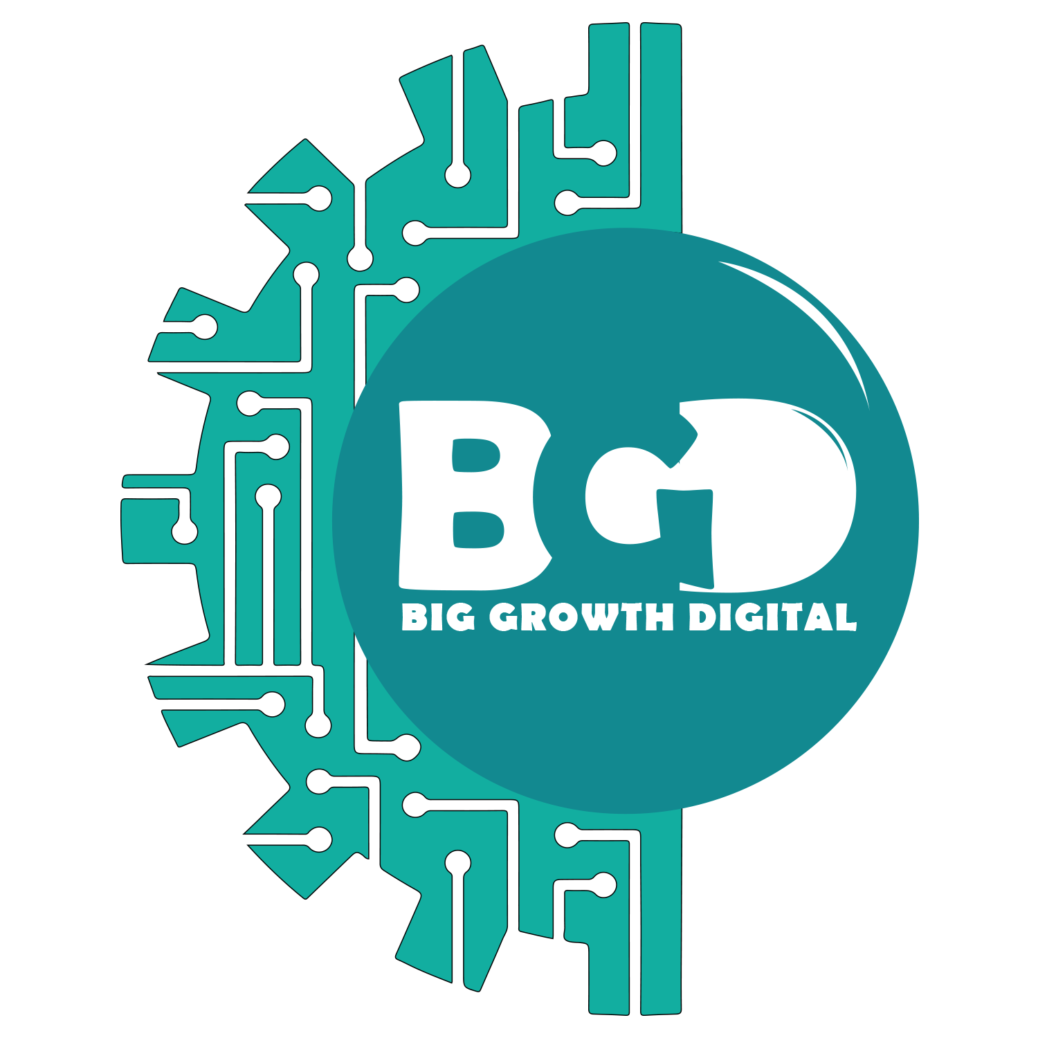 Big Growth Digital