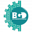 Logo of Big browth digital